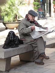 כלב יוצא לגמלאות